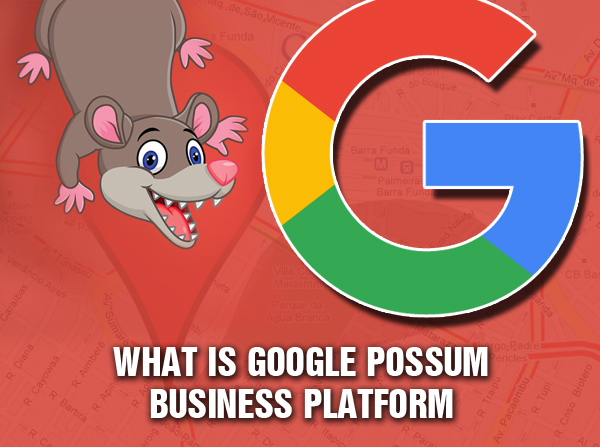 what-is-google-possum-business-platform
