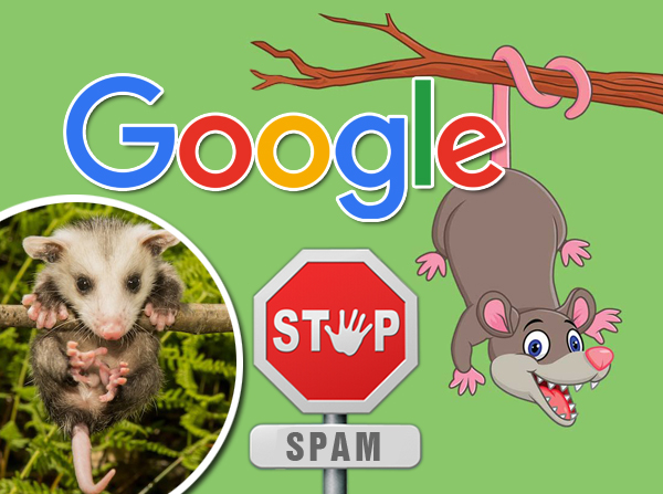 what-on-earth-is-google-possum