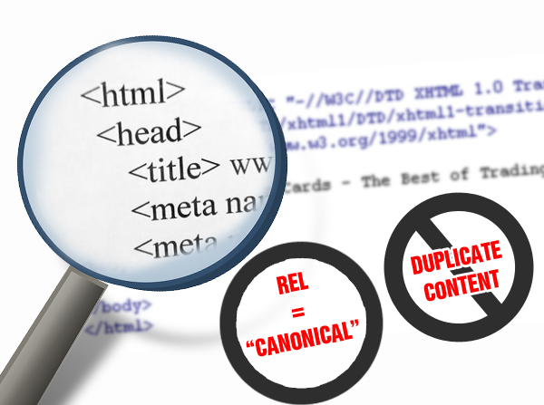 your-website-program-should-support-the-canonical-tag