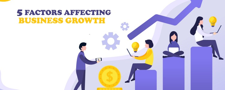 5_Factors_Affecting_Business_Growth